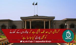 کرپشن اتنی بڑھ گئی کہ جانوروں کاکھانابھی چوری ہورہا ہے،اسلام آباد ہائیکورٹ