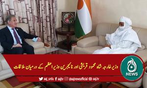 وزیرخارجہ شاہ محمود قریشی اور نائیجری وزیراعظم کے درمیان ملاقات