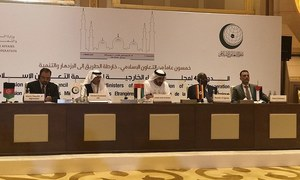 OIC reaffirms support for Kashmir cause, condemns India's illegal annexation