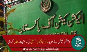 الیکشن کمیشن نے مزید 13 اراکین اسمبلی کی رکنیت بحال کر دی