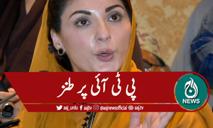 'اب الیکشن کمیشن نے چوری پکڑی تو اپیلیں کررہے ہو'پی ٹی آئی پر طنز