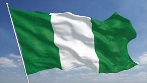 Nigeria gunmen kidnap more than 300 schoolgirls