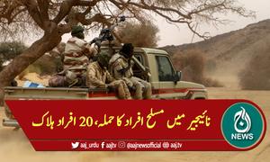 نائیجیر میں مسلح افراد کا حملہ، 20 افراد ہلاک