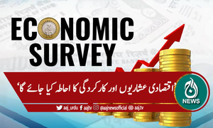 قومی اقتصادی سروے کل پیش کیا جائے گا