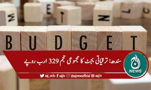 سندھ : بجٹ 13 کھرب سے زائد ہونے کا امکان