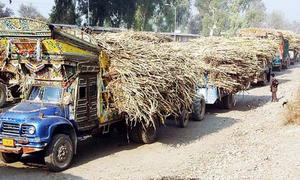 پنجاب : شوگر ملزمافیا کیخلاف کارروائی،دوملز مالکان گرفتار